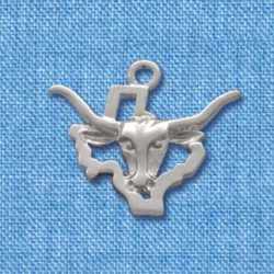 Texas Longhorn over State Outline
