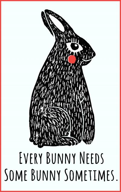 Every Bunny Needs Some Bunny Sometimes